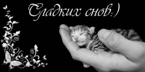 http://tanya7979.ucoz.ru/_ph/12/2/200625906.jpg